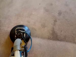 carpet getting cleaned in a Jackson County home